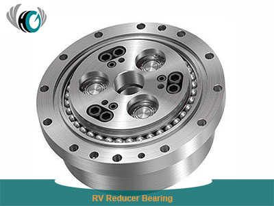 RV Reducer Bearing